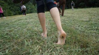A piedi nudi nel bosco-in