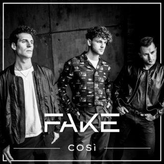 Fake Cover-in