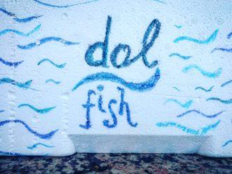Dol Fish-10