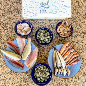 Dol Fish-5
