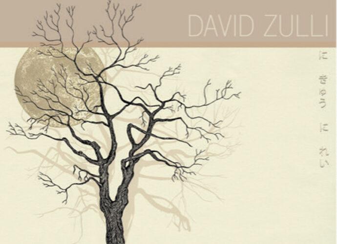 DavidZulli_Cover_2Q20-cop