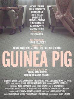 Guinea Pig - poster