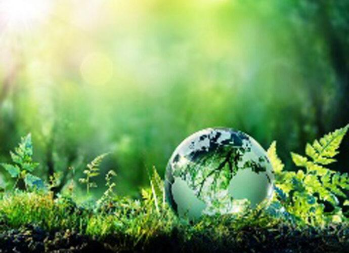 sostenibilità_ambientale-cop