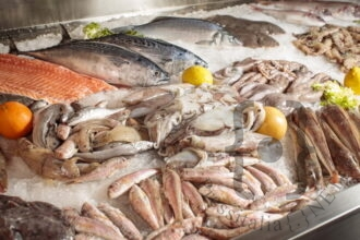 Salsedine - Banco del pesce