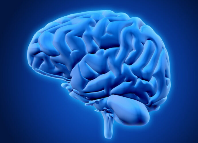 cervello-cop