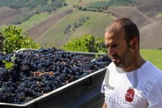 Movimento-Turismo-dell'Olio-Abruzzo-in