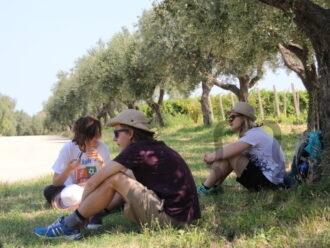 Movimento-Turismo-dell'Olio-Abruzzo-1