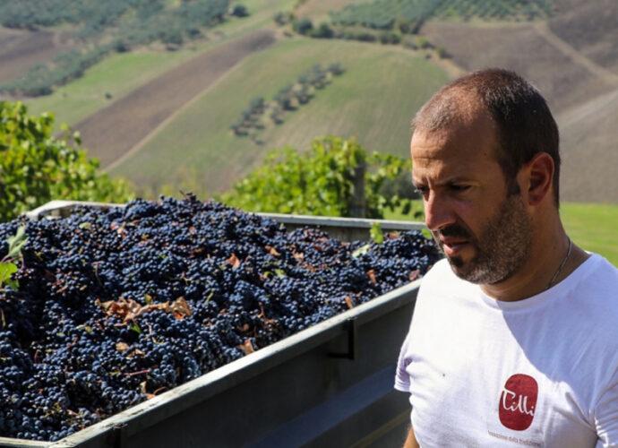 Movimento-Turismo-dell'Olio-Abruzzo-cop