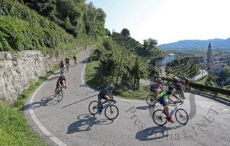 Prosecco Cycling - Discesa tra le colline