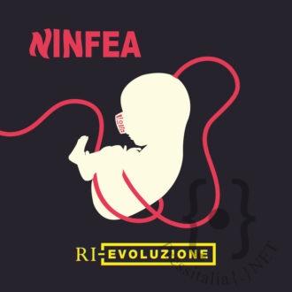 Ninfea.in