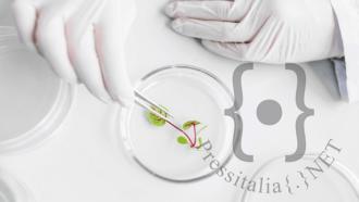 biotecnologie-in