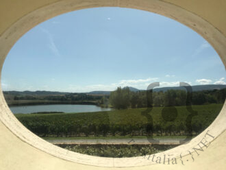 CARPINETO-Vista-sul-lago-tenuta-Montepulciano-estate