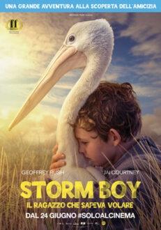 Storm-boy-in