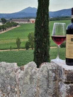 CARPINETO-Vino-Nobile-di-Montepulciano-Riserva-imbrunire-in
