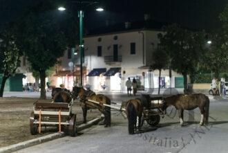 Cavallini - Forte dei Marmi - CinemaDaMare