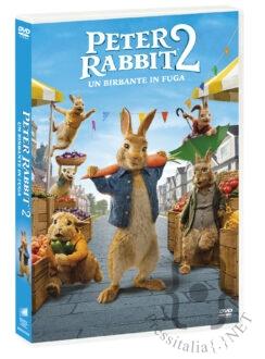 Peter Rabbit 2 - DVD