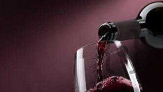 vinobicchiererossog-in
