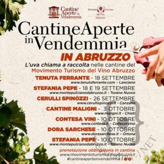 Cantine-Aperte-in-Vendemmia-in
