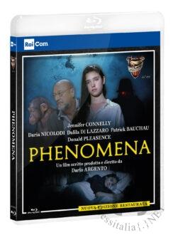 Phenomena BD